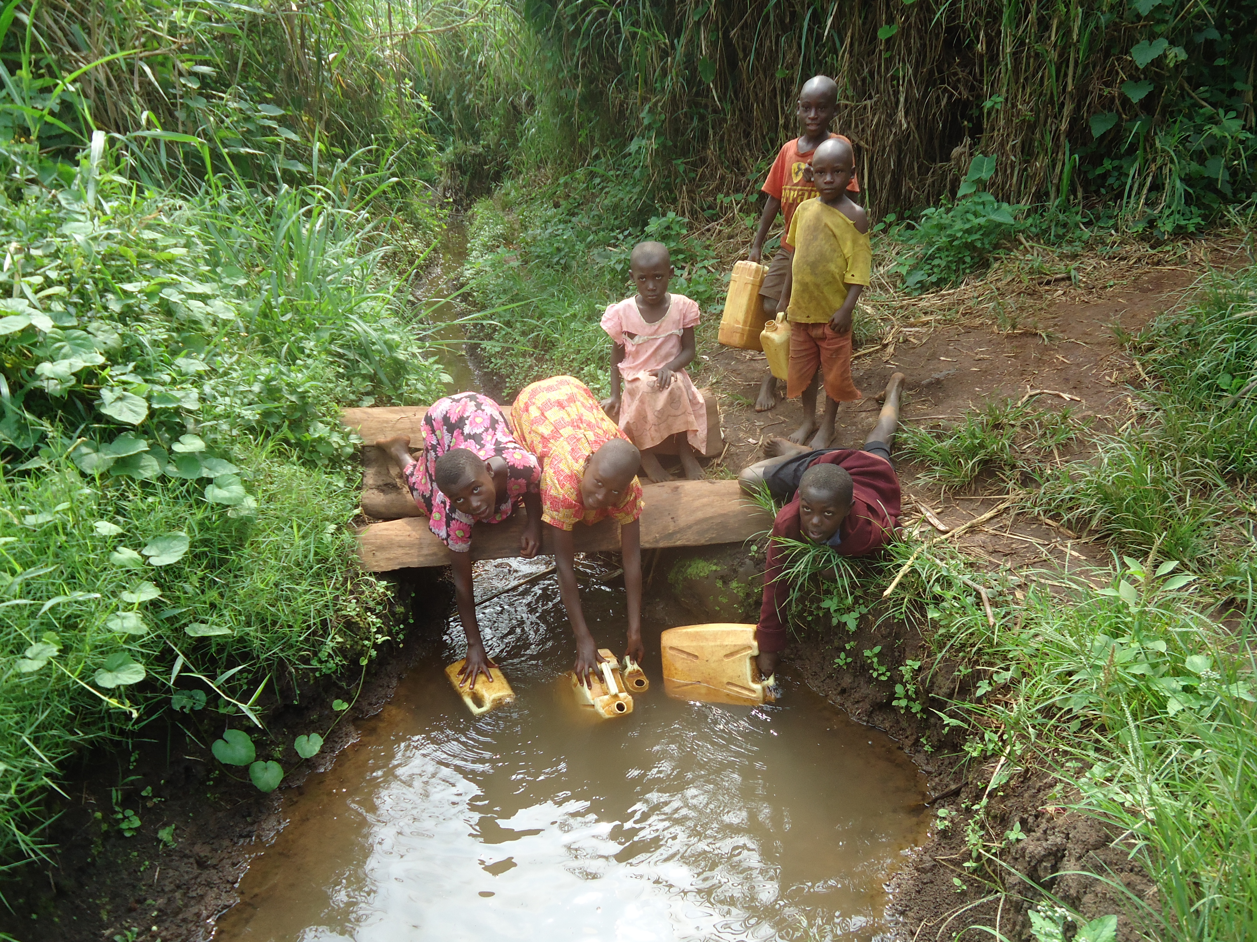 Village children using buckets to collect drinking water from a stream