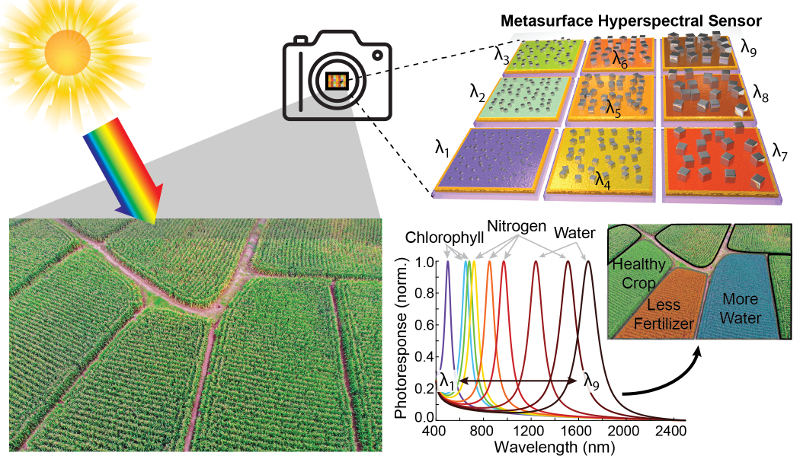 A new type of lightweight, inexpensive hyperspectral camera could enable precision agriculture. This graphic shows how different pixels can be tuned to specific frequencies of light that indicate the various needs of a crop field.