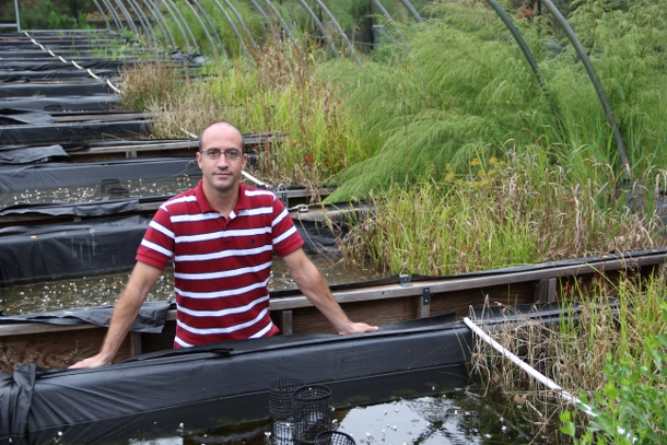 Nanotechnology researcher Lee Ferguson stands amid a collection of simulated wetlands called mescosms at Duke University. Each wetland-in-a-box is used to run the experiment under varying conditions.
