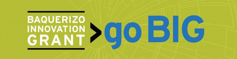 Baquerizo Innovation Grant >go BIG