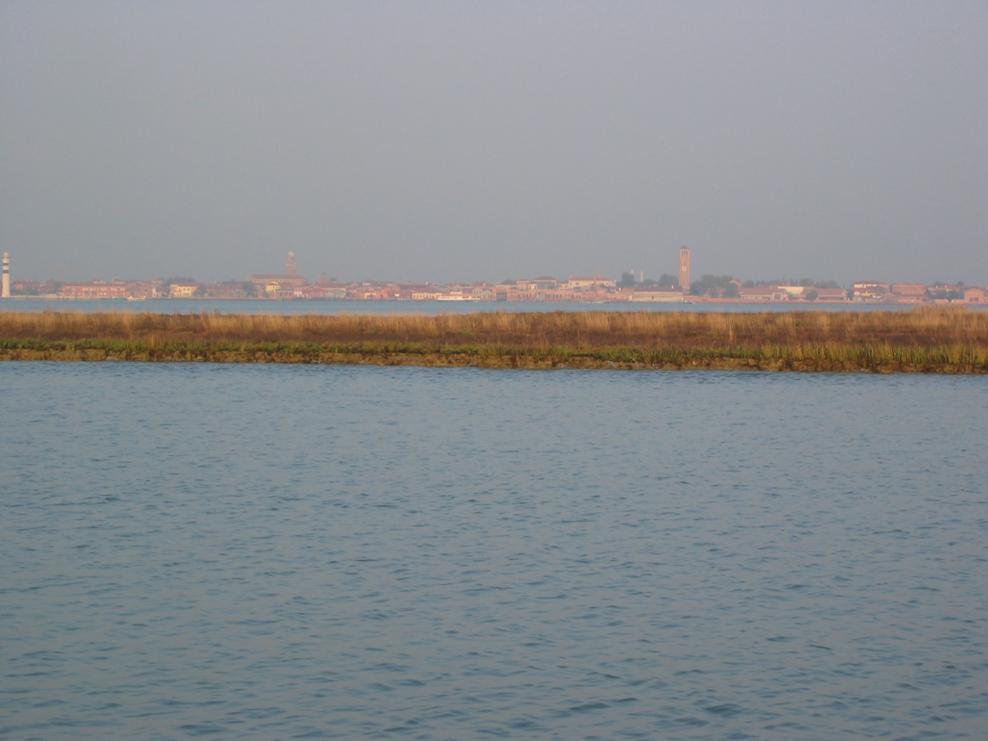 An image of marsh resilience