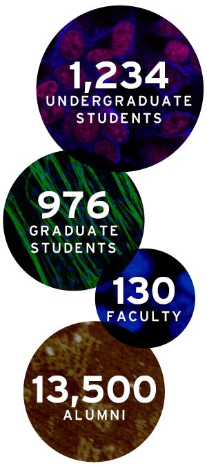 1234 Undergrad Students - 976 Grad Students - 130 Faculty - 13,500 Alumni