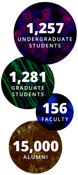 1257 Undergrad Students - 1281 Grad Students - 156 Faculty - 15,000 Alumni
