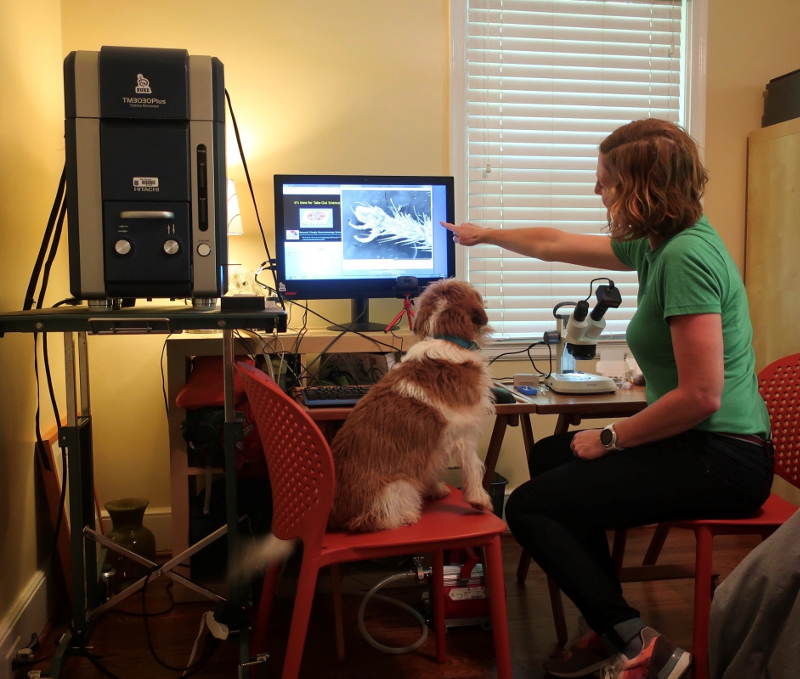 A bedroom with a computer setup and a large electronic microscope to the side with a woman and dog sitting in chairs in front of it