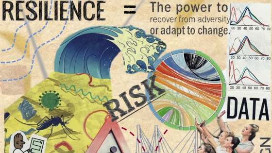 risk and resiliance collage