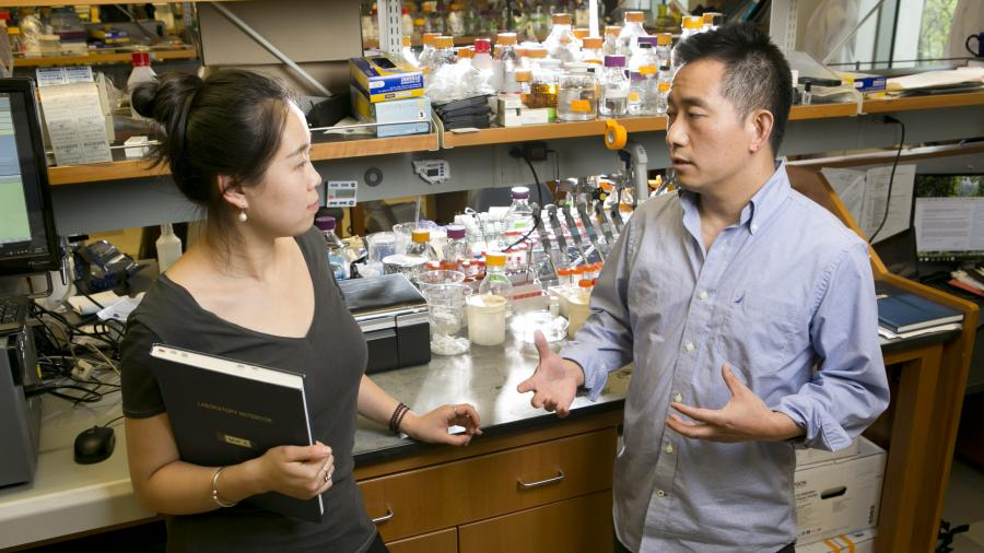 Lingchong You with grad student in lab
