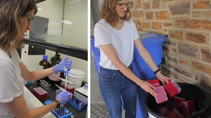 PhD candidate prepares samples and recycles used plastic pipette-tip boxes