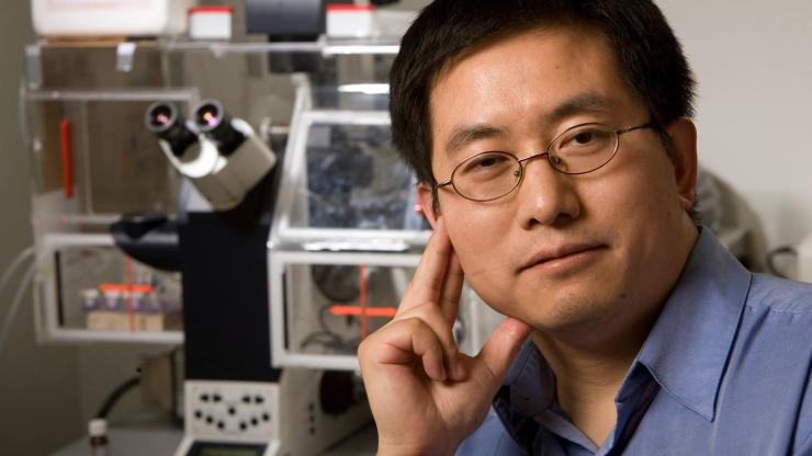 Lingchong You, the Paul Ruffin Scarborough Associate Professor of Engineering at Duke