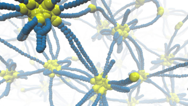 biological polymer design courtesy of Pappu Lab