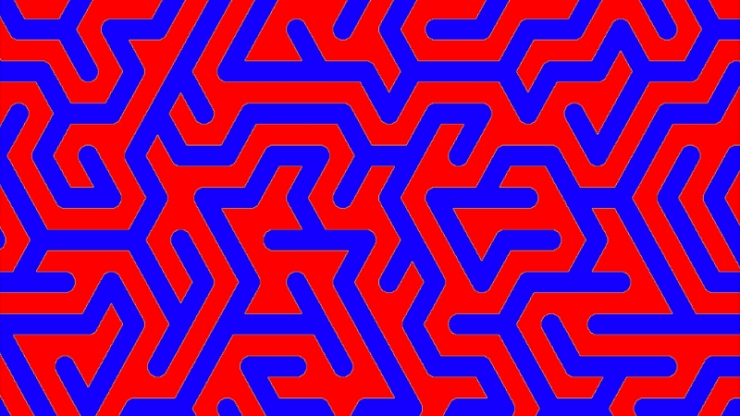 A maze of red and blue lines interwoven together