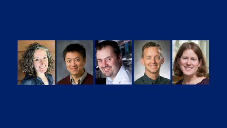 Collage of five Duke professors named Bass Fellows