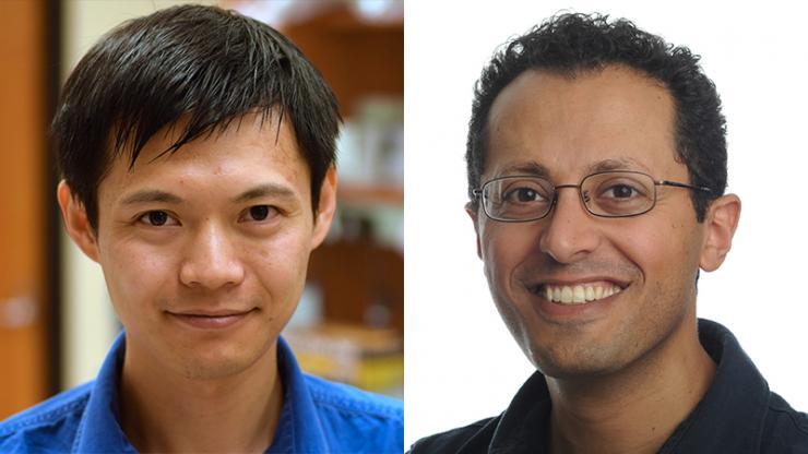 Yiyang Gong and Michael Tadross