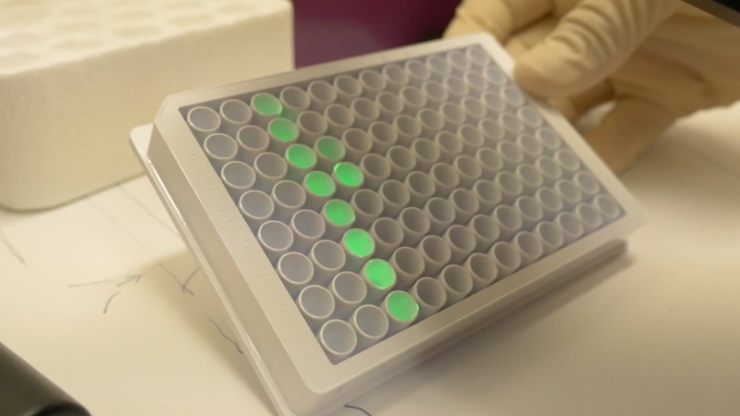A light assay used in the new cancer treatment moving toward clinical trials
