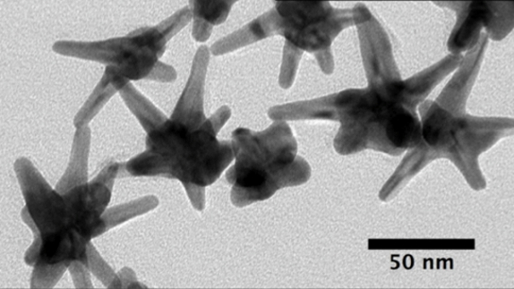 A handful of star-shaped nanoparticles with multiple prongs