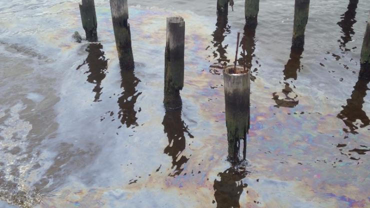 Creosote pollution on the Elizabeth River