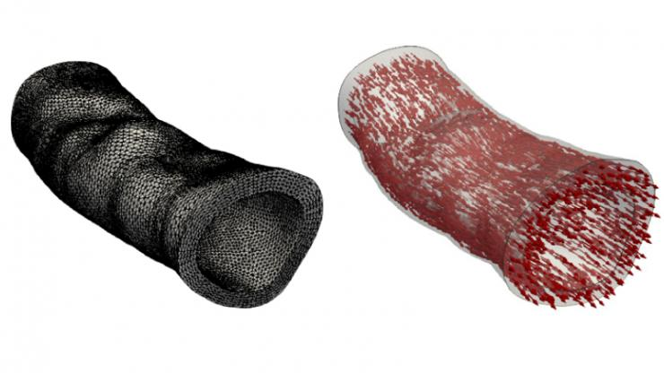 Two tubes of the same shape and features, one of black mesh and one of tiny red arrows all pointing to the right