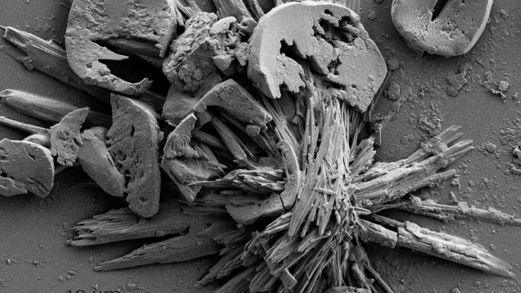 Image of particulate matter taken with scanning electron microscope