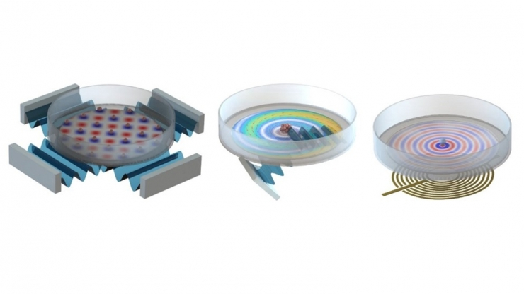 Three illustrations of petri dishes with different patterns inside