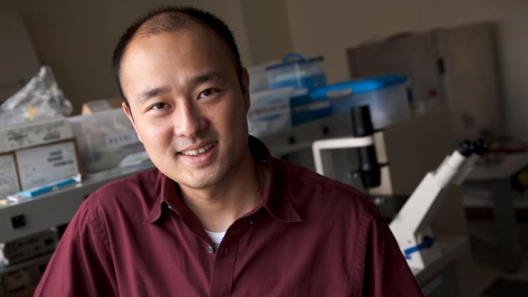 Associate Professor Xiling Shen