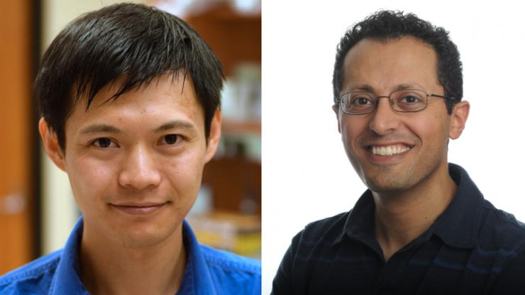 Yiyang Gong (left) and Michael Tadross (right)