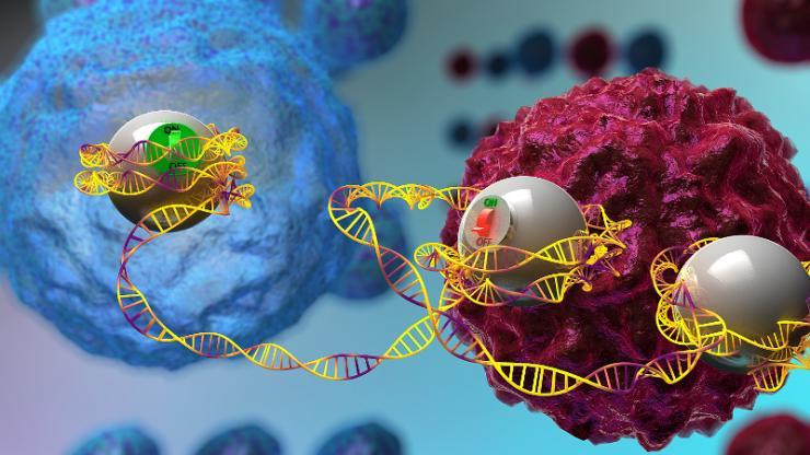 artist rendition of biomolecules