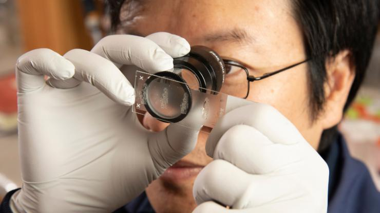 A man with white gloves looks through an eyepiece microscope at a slide