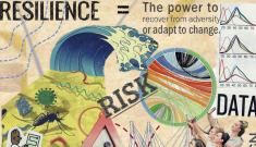 Borsuk risk collage