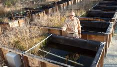 Mark Wiesner stands with mesocosms designed to explore the impact of nanoparticles on the environment