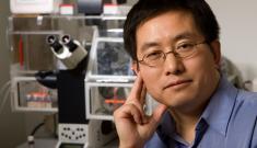 Lingchong You, the Paul Ruffin Scarborough Associate Professor of Engineering at Duke