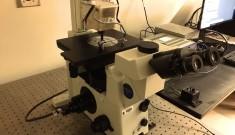 magnetic tweezers setup