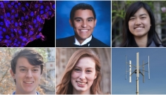 Image of cells, selected Pratt Research Fellows of the Class of 2020, a vertical wind turbine