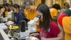 Nina Sherwood and Emma Zhang at microscope