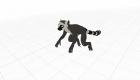 AR lemur